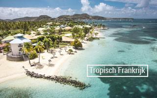 tropisch-website-320x200