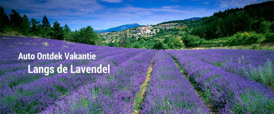 Klassieker: Langs de Lavendel